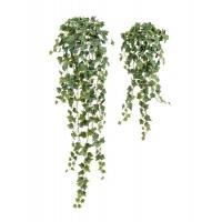 Английский Плющ Олд Тэмпл искусственный припыленно-зеленый 90, 135 см