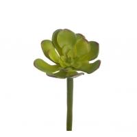 Суккулент мини Эониум Декорум искусственный зеленый 11 см (Real Touch)