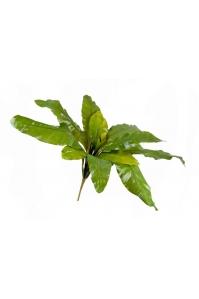 Аспениум натуральный большой искусственный зеленый 90 см (Размер (Диаметр x В), см:90 x 35)