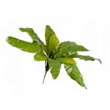 Аспениум натуральный большой искусственный зеленый 90 см