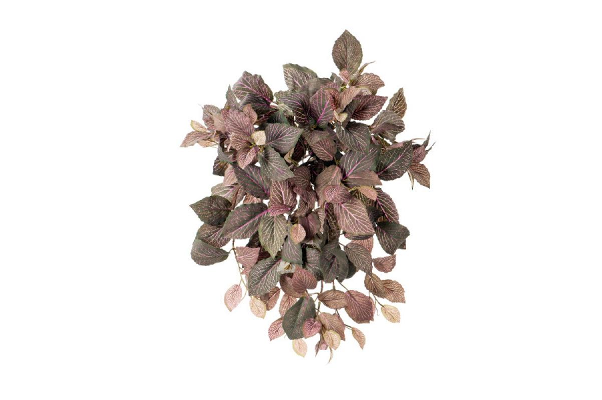 Фиттония искусственная ампельная припыленная зелено-розовая 40 см