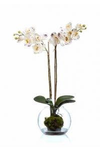 Орхидея Фаленопсис Srtouch искусственная белая с фиолетовым с мхом, корнями, землей, водой 65 см (Real Touch)
