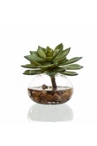 Композиция Эхеверия искусственная зеленая с галькой в воде 12 см