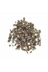 Денс Хипоэстес искусственный ампельный  розово-зеленый 26 см