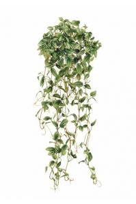 Традесканция Эйер искусственная ампельная бело-зеленая 70 см