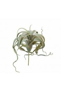 Тилландсия Ксерографика припыленная искусственная светло-зеленая 20 см
