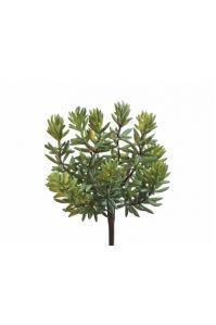 Суккулент Седум искусственный куст зеленый 11 см (Real Touch)