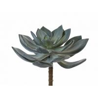 Суккулент Эхеверия Гиббифлора искусственный темно-зеленый припыленный 15 см (Real Touch)
