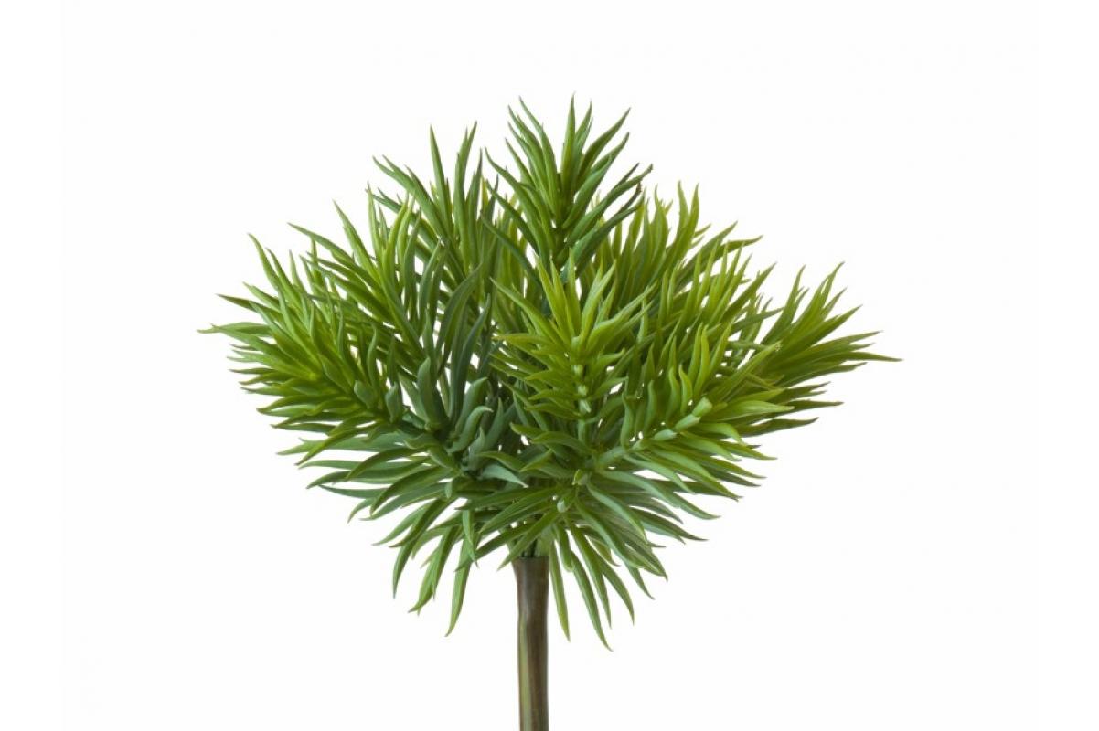 Суккулент Крассула Игольчатая искусственный куст светло-зеленый 15 (Real Touch)