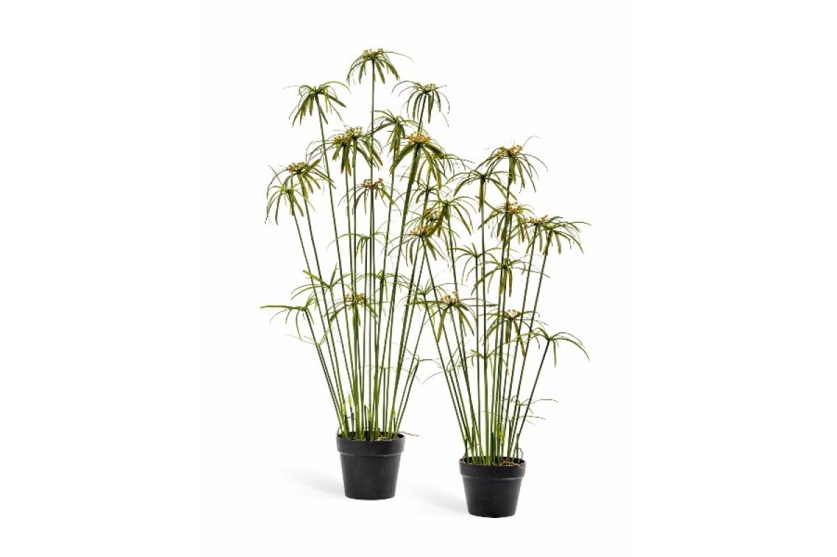 Папирус куст искусственный зеленый 100, 130 см