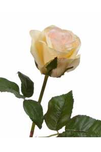 Роза Джулии искусственная нежно-персиковая с лимонным 53 см