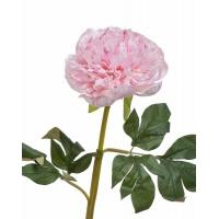 Пион махровый искусственный нежно-розовый 60 см