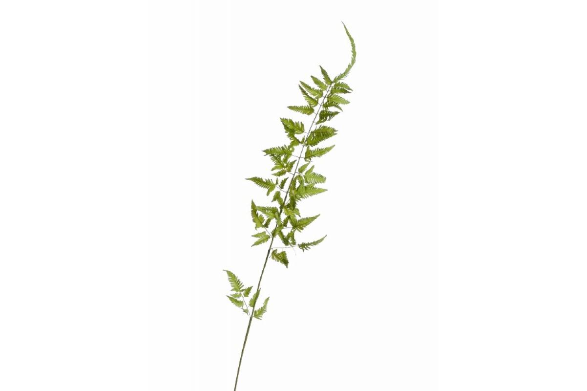 Ветка папоротника железного искусственная нежно-зеленая 135 см