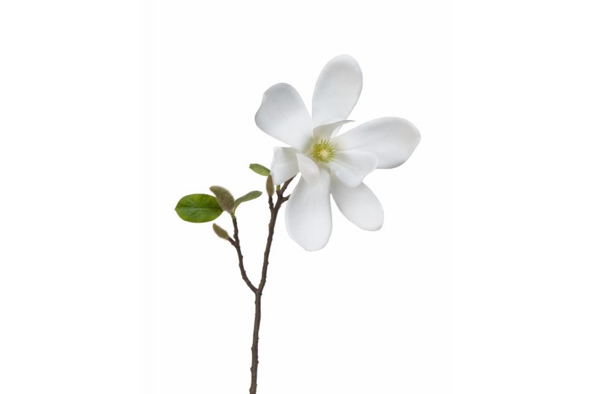 Магнолия ветка цветущая искусственная белая 37 см