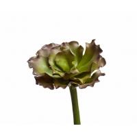 Суккулент Эхеверия Шавиана Трифлс искусственный зелено-бордовый 13 см (Real Touch)