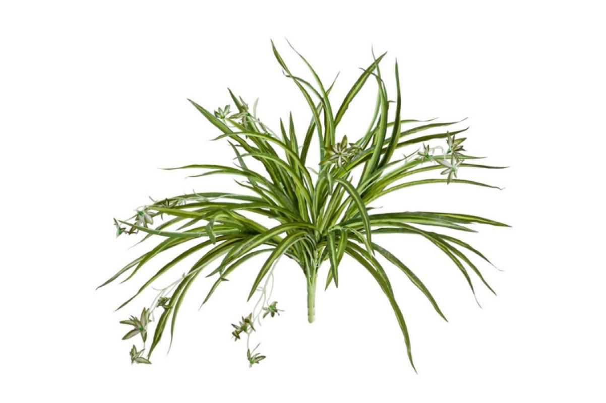 Хлорофитум куст с ростками искусственный бело-зеленый 45