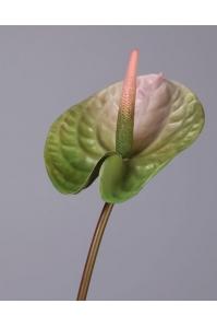 Антуриум Андрэ матовый искусственный зелено-розовый 70 см