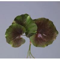 Листы Галакса 3 шт искусственные зелено-бордовые 24 см