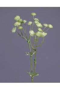 Астранция искусственная бело-зеленая 60 см