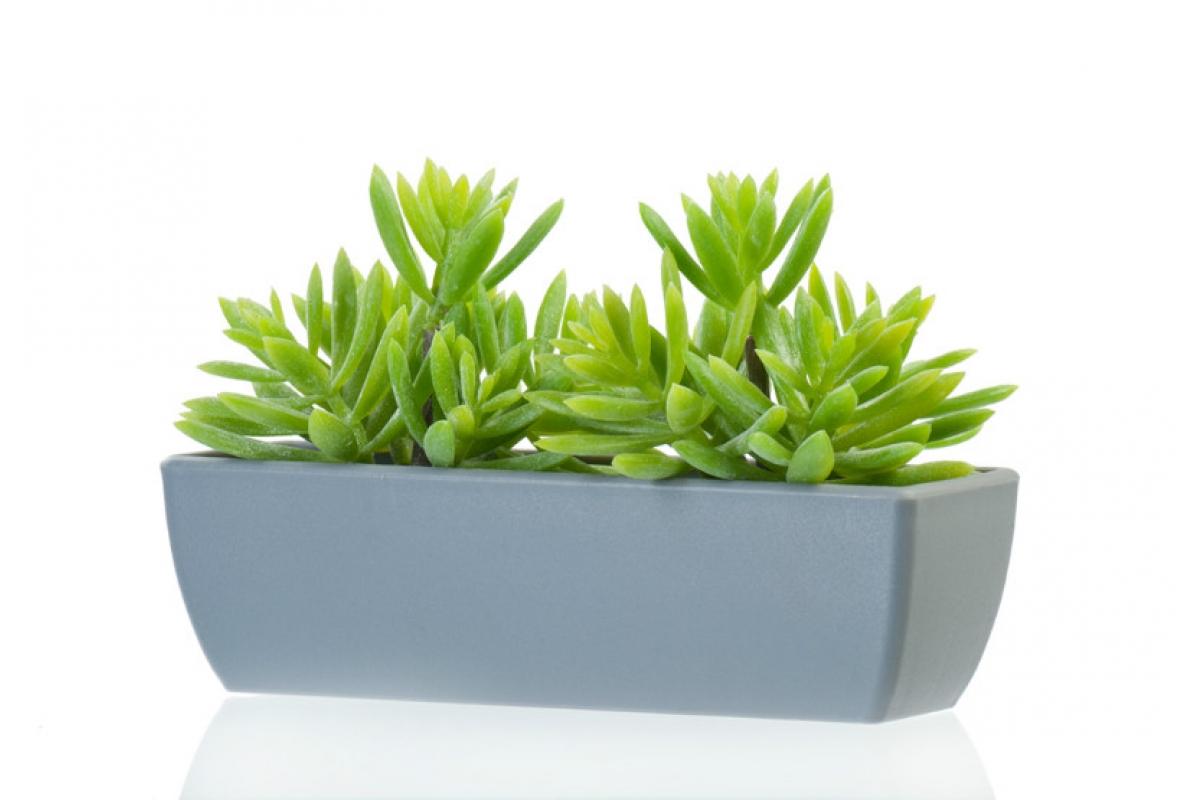 Седум искусственный зеленый в кашпо 12 см