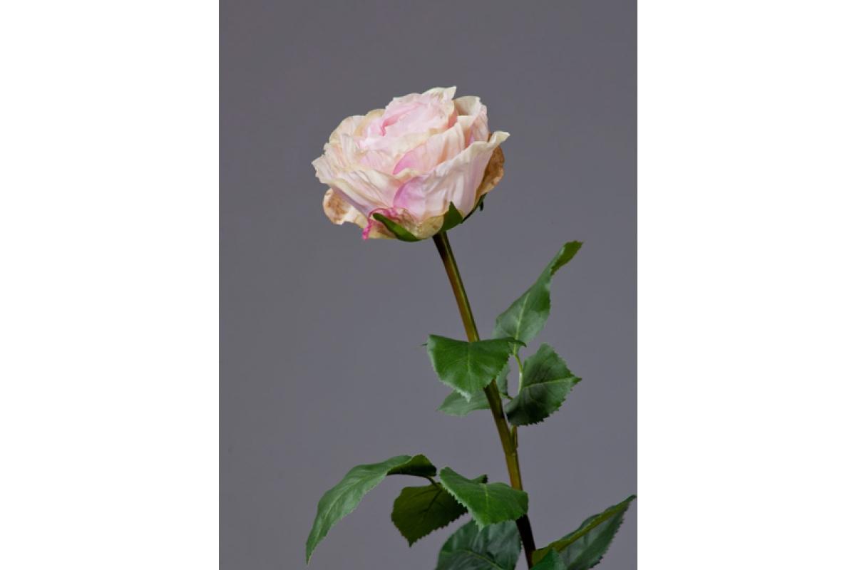 Роза Английская Большая искусственная нежно-крем-розовая 66 см