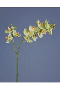 Орхидея Фаленопсис искусственная светлый лайм ветвь двойная 88 см (Real Touch)