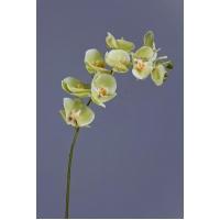 Орхидея Фаленопсис искусственная светлый лайм ветвь 74 см (Real Touch)