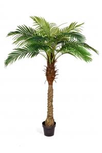 Финиковая Пальма искусственная Новая