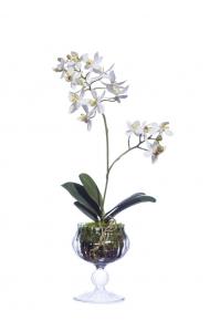Композиция Орхидея Фаленопсис в стеклянной вазочке с мхом, корнями, землей искусственная белая 39 см (Real Touch)