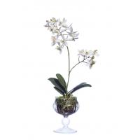 Композиция Орхидея Фаленопсис с мхом, корнями, землей искусственная белая 39 см (Real Touch)