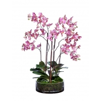 Композиция Орхидея Фаленопсис большая в стекле с мхом, корнями, землей искусственная темно-сиреневая 85 см (Real Touch)