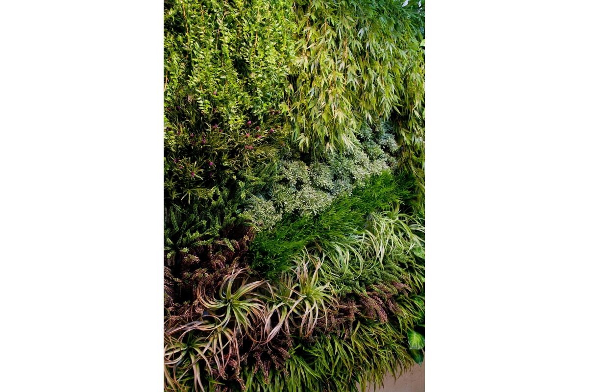Трава искусственная Ванилла Грасс зеленая 20 см - Фото 2
