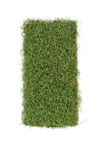 Мох Рясковый искусственный зеленый 50 x 100 см (полотно)