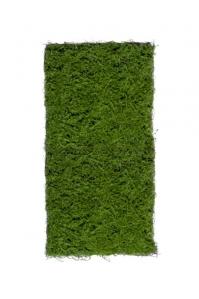 Мох Сфагнум искусственный зеленый 50 x 100 см (полотно)