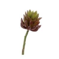 Суккулент Синокрассула большой искусственный зелено-бордовый 17 см