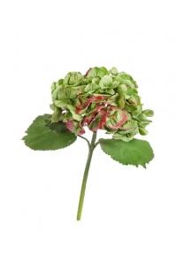 Гортензия Крупно-цветковая искусственная светло-зеленная с бордо 38 см MDP