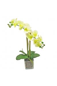 Орхидея Фаленопсис искусственная 2 ветки в стеклянном кубе 50 см