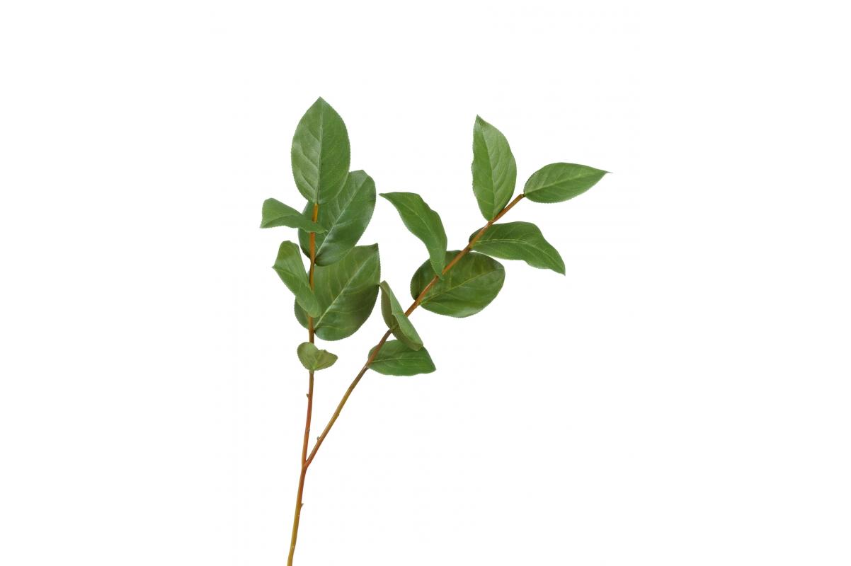 Ветвь Салала искусственная большая 65 см