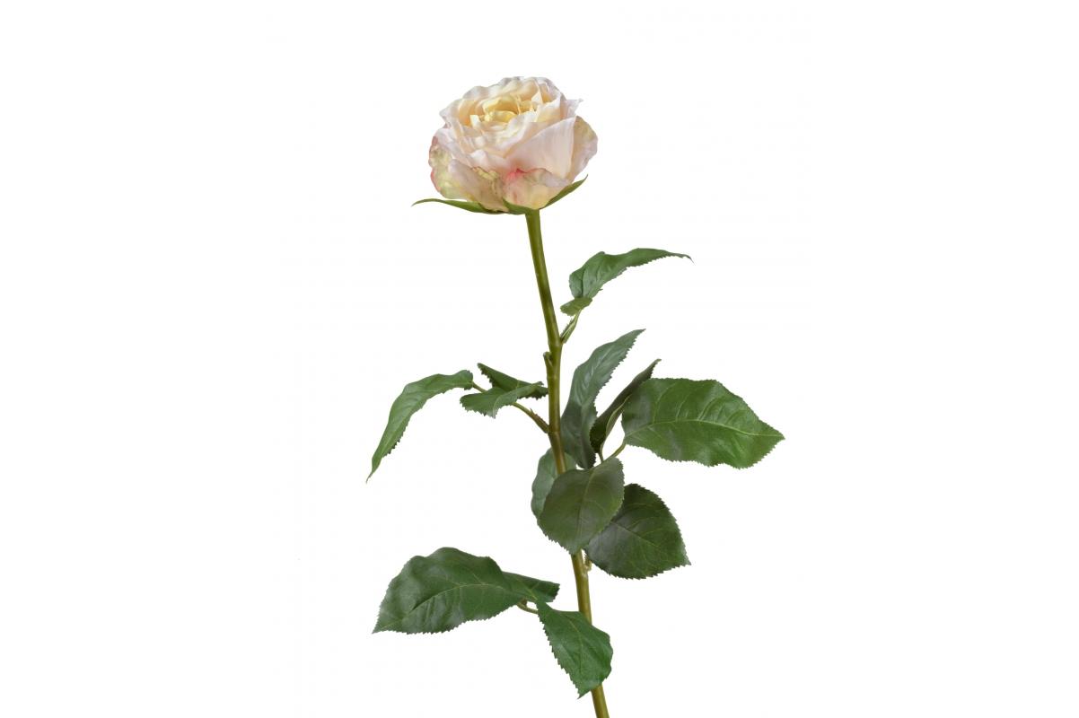 Роза Английская искусственная нежно-персиково-розовая 66 см