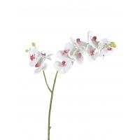 Орхидея Фаленопсис искусственная белая с розовой сердцевинкой ветвь двойная 88 см (Real Touch)