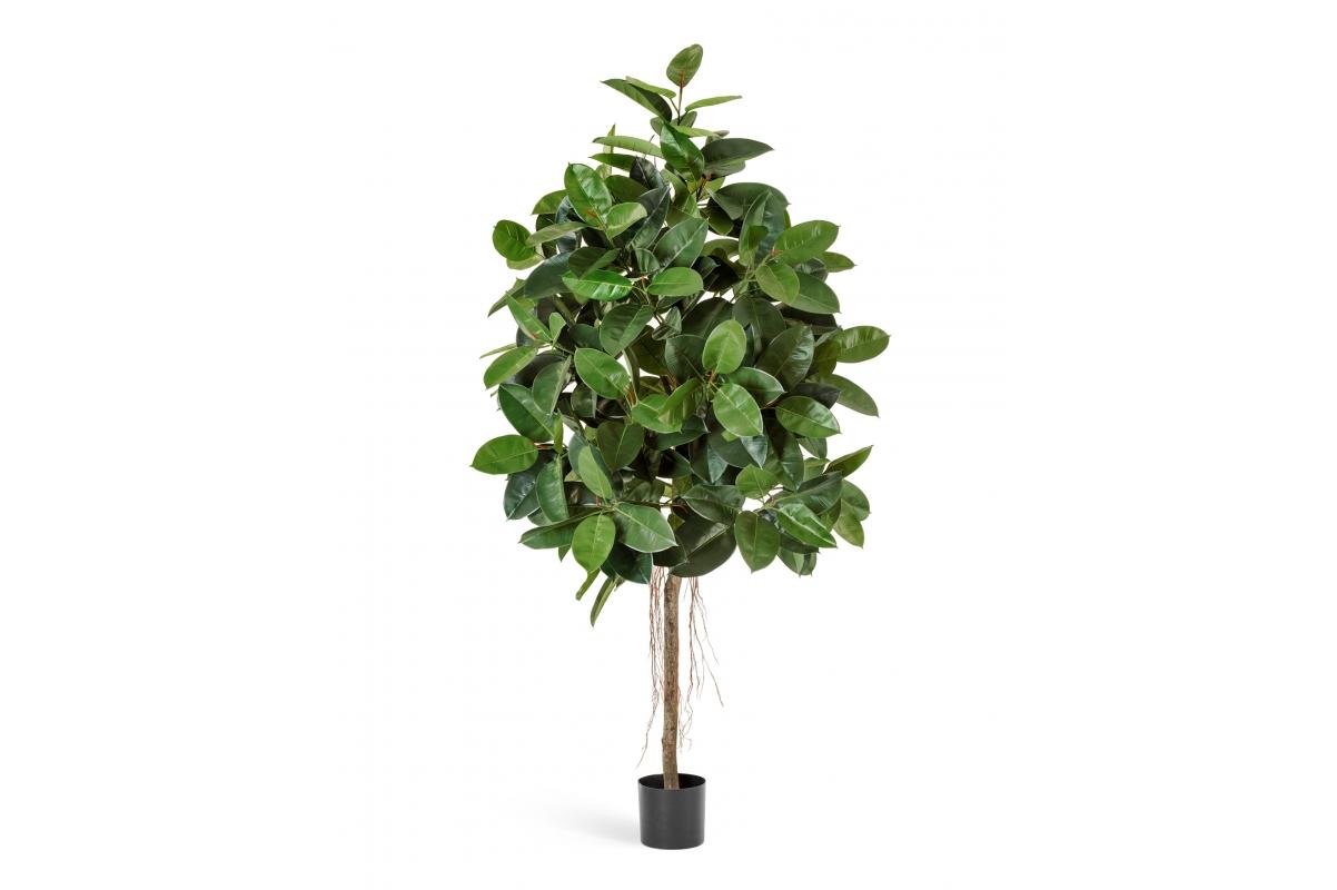 Фикус Эластика искусственный зеленый