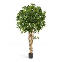 Шеффлера искусственная зонтичная зеленая