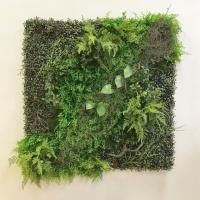 Фитостена из искусственных растений «Пролесок» 1м2