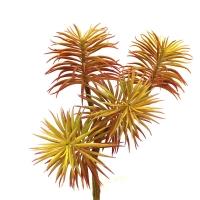 Суккулент Ветка Пихты искусственный желто-красный 70 см