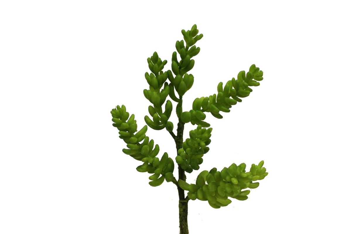 Суккулент Крассула искусственный зеленый 20 см