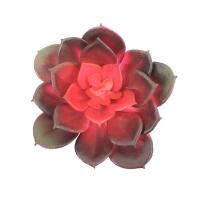 Суккулент Каменная Роза искусственный бордовый 12 см