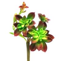 Суккулент Каменная Роза искусственная зелено-бордовая 25 см