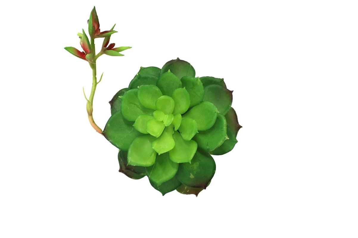 Суккулент Каменная Роза с отростком искусственный зелено-красный 8 см