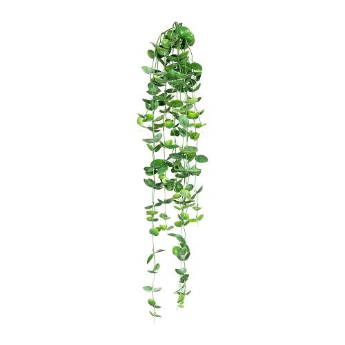 Дисхидия искусственная зеленая 100 см
