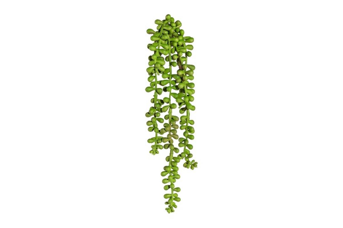 Крестовник (сенецио) искусственный зеленый 30 см